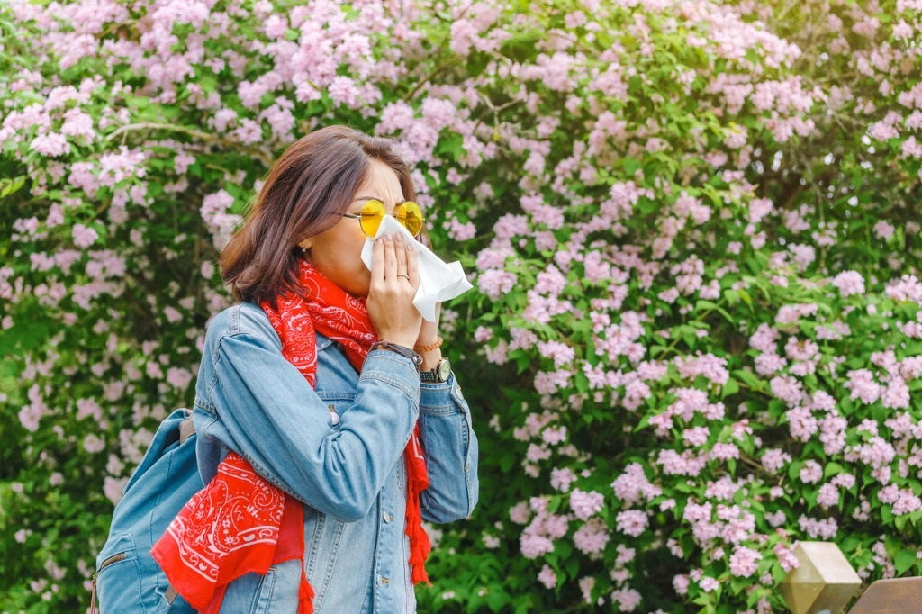 Allergy Medication is available at your local Pharmachoice Pharmacy